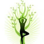 yoga-tree-1281240634